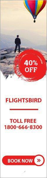 flightsbird